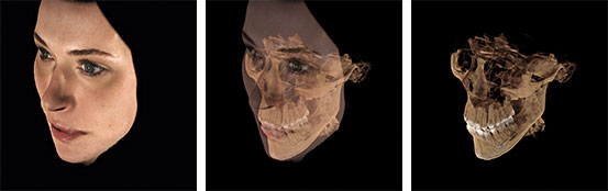 Three FaceScanner examples